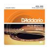 010 strune za akustično kitaro