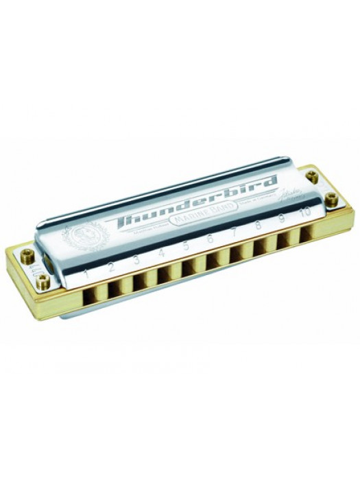 HOHNER THUNDERBIRD LOW G ORGLICE