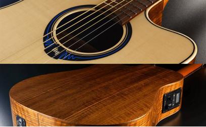 Zlata nagrada za Lag Hyvibe elektro akustično kitaro!
